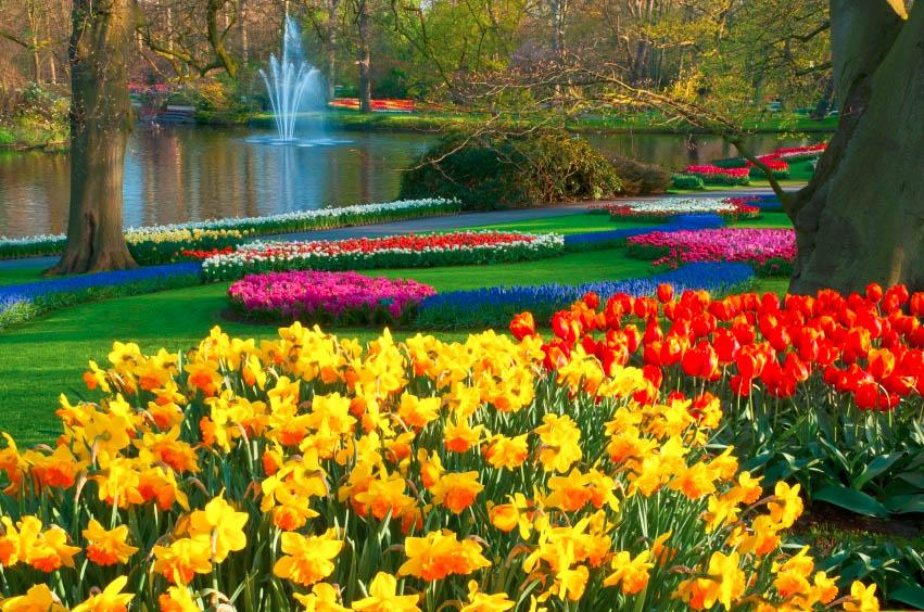 Dự án Lavila có Công viên hồ cảnh quan 4 hecta lấy cảm hứng thiết kế từ công viên Keukenhof Hà Lan