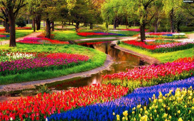 Công viên cảnh quan dự án Lavila Kiến Á lấy cảm hứng từ công viên Keukenhof Hà Lan.