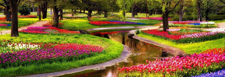 Ý tưởng thiết kế công viên hồ cảnh quan 4 hecta dự án Lavila Kiến Á lấy cảm hứng từ công viên Keukenhof Hà Lan.