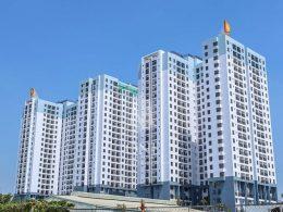 Cho thuê căn hộ M-One Nam Sài Gòn tại quận 7: 3 phòng ngủ giá tốt.