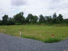 1/3 diện tích đất nông nghiệp hiện hữu tại TP.HCM dự kiến sẽ được chuyển thành đất đô thị.