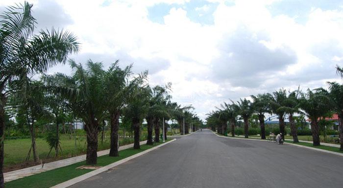 Một dự án đất nền tại khu vực quận 9.