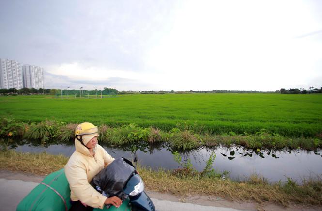TPHCM - Thành phố Hồ chí Minh quy hoạch đất nông nghiệp chuyển đổi thành đất công nghiệp và dịch vụ quy mô hơn 26000 hectare.
